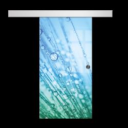 Drzwi Szklane Przesuwne 650X2095 8MM ESG/VSG GRAFIKA 2STR GR-H017 + SYSTEM PRZESUWNY